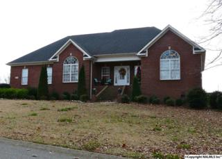 6  Hollytree Circle  , Fayetteville, AL 37334 (MLS #1009060) :: Exit Realty of the Valley