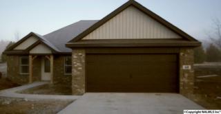 60  Sonoma Drive  , Fayetteville, TN 37334 (MLS #1009125) :: Amanda Howard Real Estate