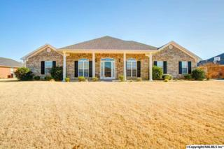 14642  Indigo Court  , Harvest, AL 35749 (MLS #1009362) :: Morley Real Estate Group