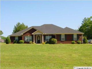 20241  Nuclear Plant Road  , Tanner, AL 35671 (MLS #1011193) :: Matt Curtis Real Estate, Inc.