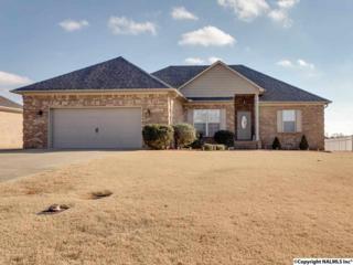 25756  Iron Gate Drive  , Madison, AL 35756 (MLS #1012828) :: Matt Curtis Real Estate, Inc.