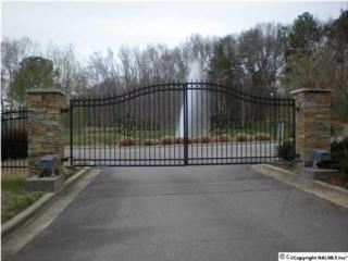 Marina Drive  , Athens, AL 35611 (MLS #1013804) :: Matt Curtis Real Estate, Inc.
