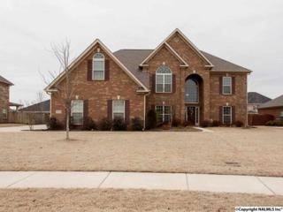 3208  Sandstone Street  , Hampton Cove, AL 35763 (MLS #1013819) :: Matt Curtis Real Estate, Inc.