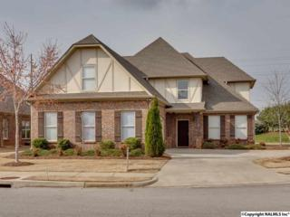 28  Maple Grove Blvd  , Huntsville, AL 35824 (MLS #1015720) :: Matt Curtis Real Estate, Inc.