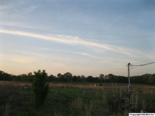 10637  Popular Point Road  , Athens, AL 35611 (MLS #1017234) :: Matt Curtis Real Estate, Inc.