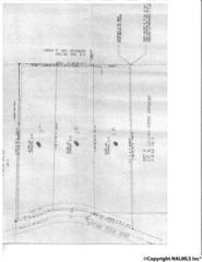 1044  Dug Hill Road  , Brownsboro, AL 35801 (MLS #1017269) :: Matt Curtis Real Estate, Inc.