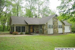 134  Lewis Mountain Road  , New Market, AL 35761 (MLS #1017446) :: Matt Curtis Real Estate, Inc.