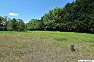 109  Rose Point Court  , Huntsville, AL 35811 (MLS #1017955) :: Amanda Howard Real Estate
