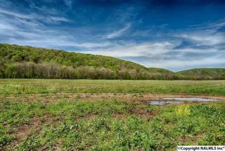 Estill Fork, AL 35745 :: Amanda Howard Real Estate
