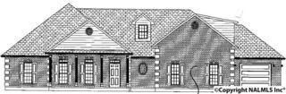 209  Mantle Drive  , Madison, AL 35757 (MLS #1018060) :: Amanda Howard Real Estate