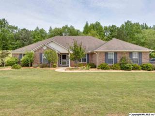 109  Autumn Pointe Drive  , Madison, AL 35757 (MLS #1019542) :: Matt Curtis Real Estate, Inc.