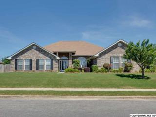 113  Bay Pointe Lane  , Madison, AL 35758 (MLS #1020131) :: Matt Curtis Real Estate, Inc.