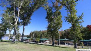 2895  Marina Drive  , Athens, AL 35611 (MLS #1020698) :: Matt Curtis Real Estate, Inc.