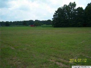 0  Pulaski Pike  , Toney, AL 35773 (MLS #1020902) :: Amanda Howard Real Estate