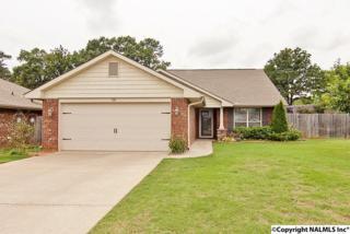 218  Fields Pond Drive  , Madison, AL 35756 (MLS #1020905) :: Amanda Howard Real Estate