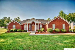 176  Thunderbird Drive  , Harvest, AL 35749 (MLS #751734) :: Morley Real Estate Group