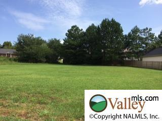 Sunnyview Drive  , Huntsville, AL 35811 (MLS #1002555) :: Exit Realty of the Valley