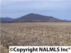 TWO  Little Cove Road  , Gurley, AL 35748 (MLS #1017380) :: Matt Curtis Real Estate, Inc.