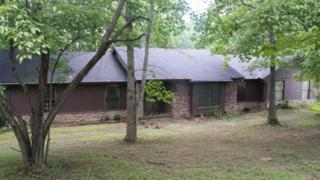 7124  Waynes Ln  , Fairview, TN 37062 (MLS #1561530) :: KW Armstrong Real Estate Group