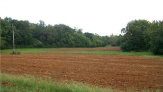 0  Starlite Rd  , Hartsville, TN 37074 (MLS #1571983) :: KW Armstrong Real Estate Group