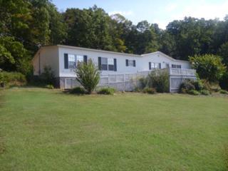 3014  Williamson Branch Rd  , Vanleer, TN 37181 (MLS #1577198) :: Exit Realty Music City