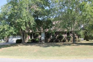 515  Greenleaf Ave  , Smyrna, TN 37167 (MLS #1583083) :: KW Armstrong Real Estate Group