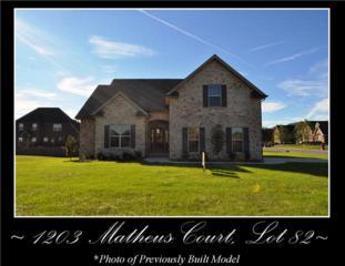 1203  Matheus Court - Lot 82  , Murfreesboro, TN 37128 (MLS #1584835) :: EXIT Realty Bob Lamb & Associates