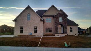 1231  Pleasant Colony Ct  , Murfreesboro, TN 37129 (MLS #1592134) :: EXIT Realty Bob Lamb & Associates