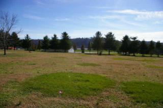 226  Barton Dr  , Normandy, TN 37360 (MLS #1592196) :: KW Armstrong Real Estate Group