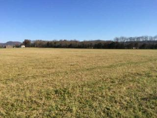 7  Porterfield  , Readyville, TN 37149 (MLS #1592319) :: KW Armstrong Real Estate Group
