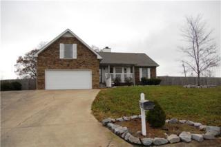 621  Fallbrook Ln  , Clarksville, TN 37040 (MLS #1594508) :: EXIT Realty Bob Lamb & Associates