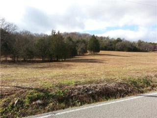 0  Ferrell Hollow Rd  , Readyville, TN 37149 (MLS #1605932) :: EXIT Realty Bob Lamb & Associates
