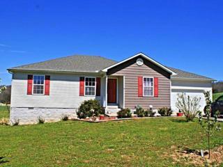 67  Gilley Hill Rd  , Bradyville, TN 37026 (MLS #1611923) :: EXIT Realty Bob Lamb & Associates