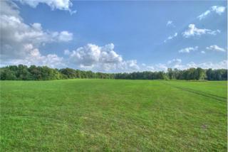 0  C Walker  , Smithville, TN 37166 (MLS #1611932) :: EXIT Realty Bob Lamb & Associates