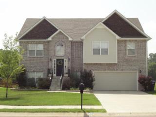 853  E Accipiter Cir  , Clarksville, TN 37043 (MLS #1613167) :: EXIT Realty Bob Lamb & Associates