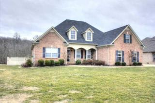 5074  Macarthur Ave  , Murfreesboro, TN 37129 (MLS #1613705) :: EXIT Realty Bob Lamb & Associates