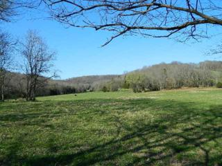 6923  Pulltight Hill Rd  , College Grove, TN 37046 (MLS #1620757) :: KW Armstrong Real Estate Group