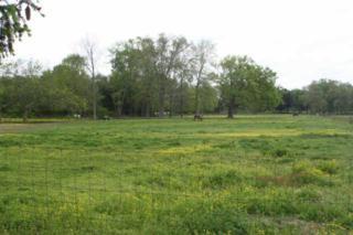 444  W Thompson Ln  , Murfreesboro, TN 37129 (MLS #1627108) :: EXIT Realty Bob Lamb & Associates