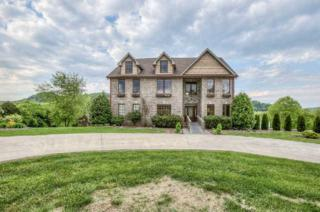 8251  River Road Pike  , Nashville, TN 37209 (MLS #1630824) :: Exit Realty Music City