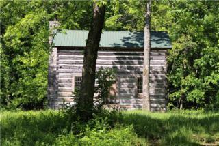 1  Coleman Hill Rd  , Rockvale, TN 37153 (MLS #1631146) :: EXIT Realty Bob Lamb & Associates