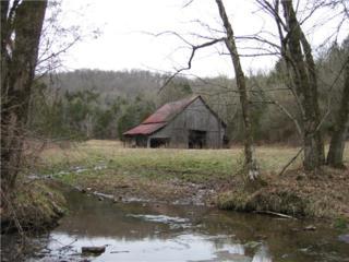 0  Helton Creek Rd  , Hickman, TN 38567 (MLS #1636746) :: EXIT Realty Bob Lamb & Associates