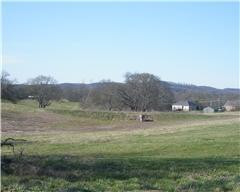 1031  Meridian Dr  , Castalian Springs, TN 37031 (MLS #1619358) :: KW Armstrong Real Estate Group