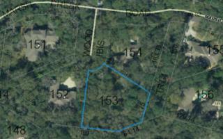 103  Wood Ibis  , Fernandina Beach/Amelia Island, FL 32034 (MLS #63677) :: Prudential Chaplin Williams Realty