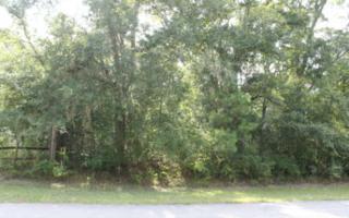 LOT 7  Meadowfield Bluffs Road  , Fernandina Beach, FL 32034 (MLS #63920) :: Prudential Chaplin Williams Realty