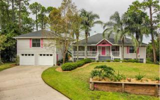 95011  Piney Island Court  , Fernandina Beach, FL 32034 (MLS #64072) :: Berkshire Hathaway HomeServices Chaplin Williams Realty