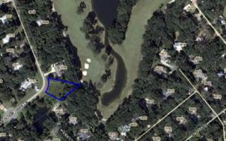LOT 11  Plantation Oaks Lane  , Fernandina Beach/Amelia Island, FL 32034 (MLS #64148) :: Prudential Chaplin Williams Realty