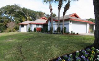 143  Ibis Court  , Fernandina Beach/Amelia Island, FL 32034 (MLS #64508) :: Prudential Chaplin Williams Realty