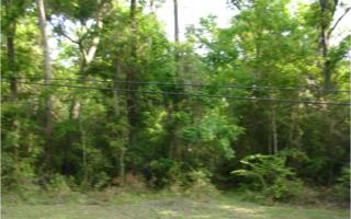 LOT 54  Pirates Point Road  , Yulee, FL 32097 (MLS #65536) :: Berkshire Hathaway HomeServices Chaplin Williams Realty