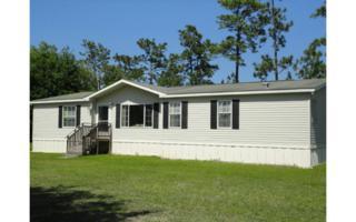 28749  Sundberg Road  , Hilliard, FL 32046 (MLS #65777) :: Berkshire Hathaway HomeServices Chaplin Williams Realty