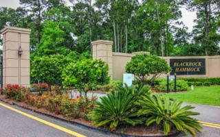 LOT 27  Southern Pride Court  , Yulee, FL 32097 (MLS #61811) :: Berkshire Hathaway HomeServices Chaplin Williams Realty